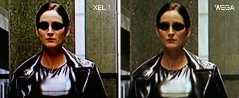 xel-1_071129_4.jpg